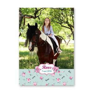 Poster A3 paard