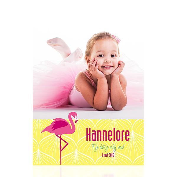 Fotokaart flamingo
